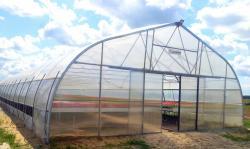 Промышленная фермерская теплица Oriente RUS