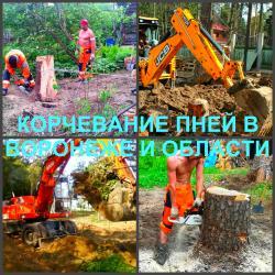 Корчевание Воронеж, корчевание пней в Воронеже