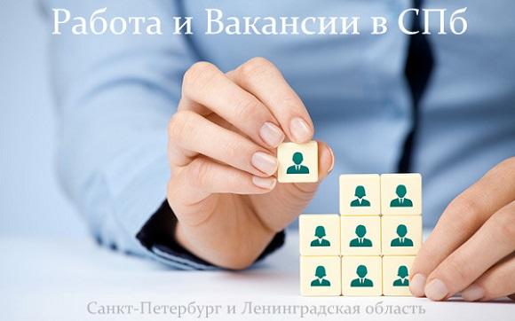 caef8c7d122f9 Работа, вакансии, ищу работу в СПб Санкт-Петербург