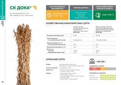 Семена сои сорт СК Дока селекции Компании Соевый комплекс