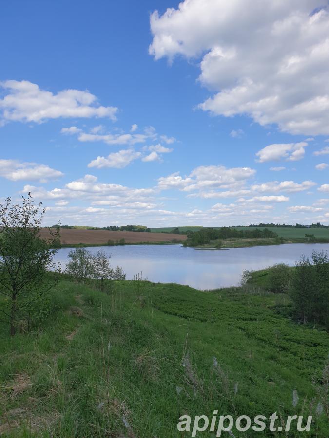 Продам участок 10 сот, земли сельхозназначения (СНТ, ДНП) - Малоярославец