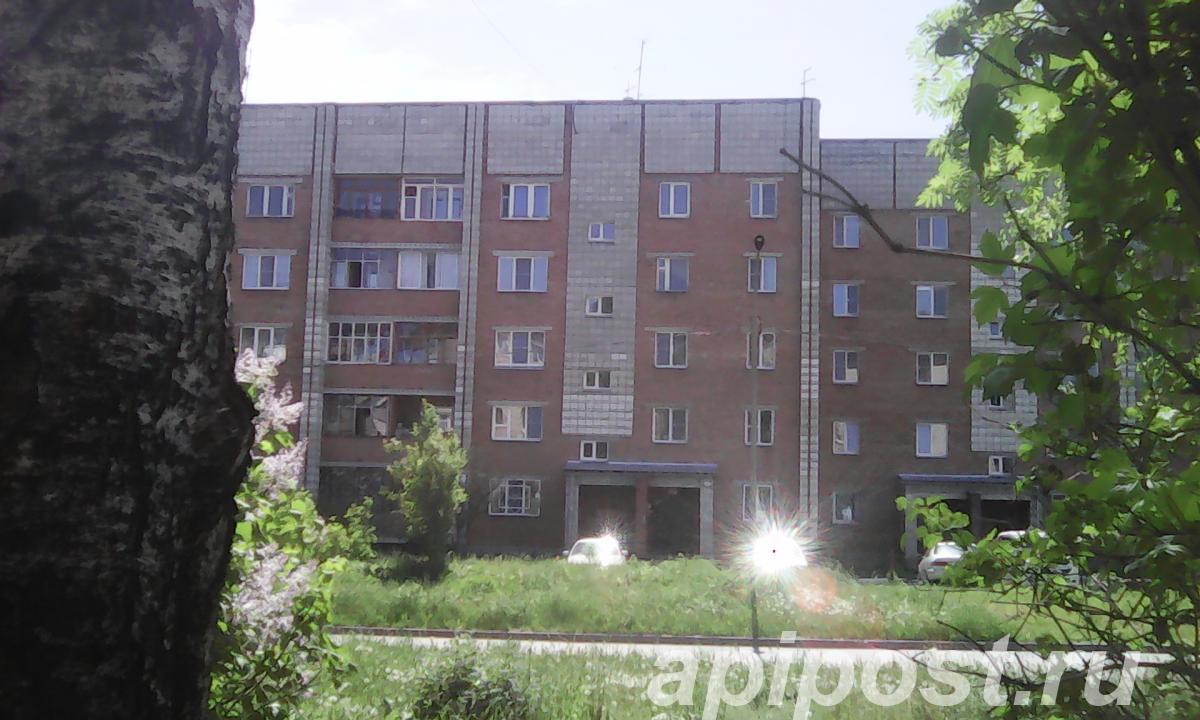 Продам 1-комнатную квартиру 33 м², 5/5 эт - НОВОСИБИРСК