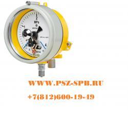 Манометр ДМ2005ф Сг 1Exd исп V 0-1 МПа кт. 1,5 d. 160 IP54 ...