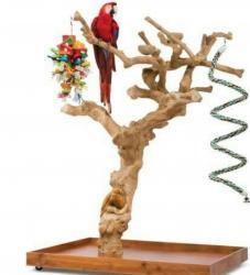 Насесты из кофейного дерева для крупных видов попугаев