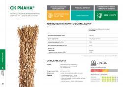 Семена сои сорт СК Риана селекции Компании Соевый комплекс