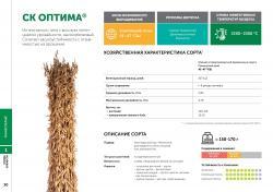 Семена сои сорт СК Оптима селекции Компании Соевый комплекс