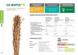 Семена сои сорт СК Фарта селекции Компании Соевый комплекс